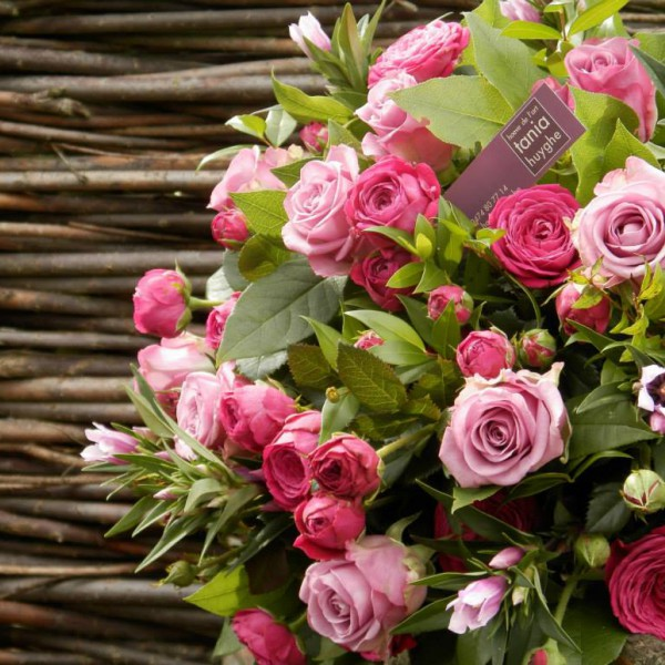 Mooi wat bloemen doen